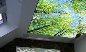 Plafonds tenuds : Design et Esthétique